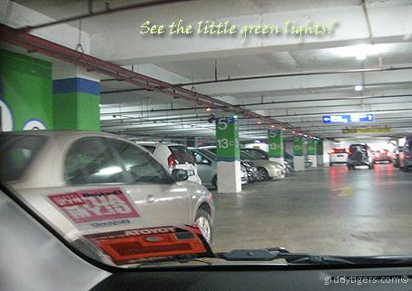 parkinglights2