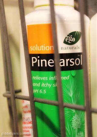 pinetarsol1
